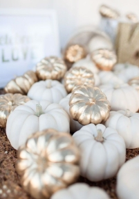 CPI-white-pumpkin-